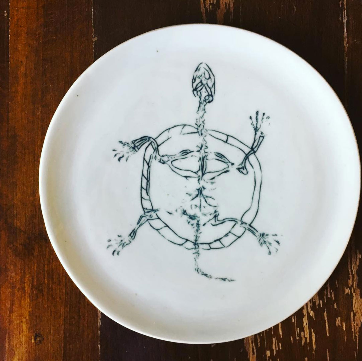 Clay: Turtle Plate